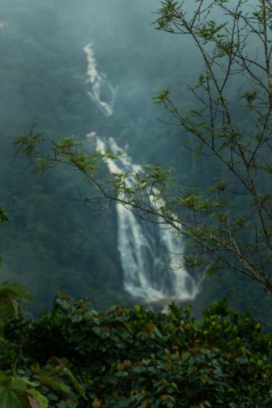 Glimpse of Meenmutty waterfalls